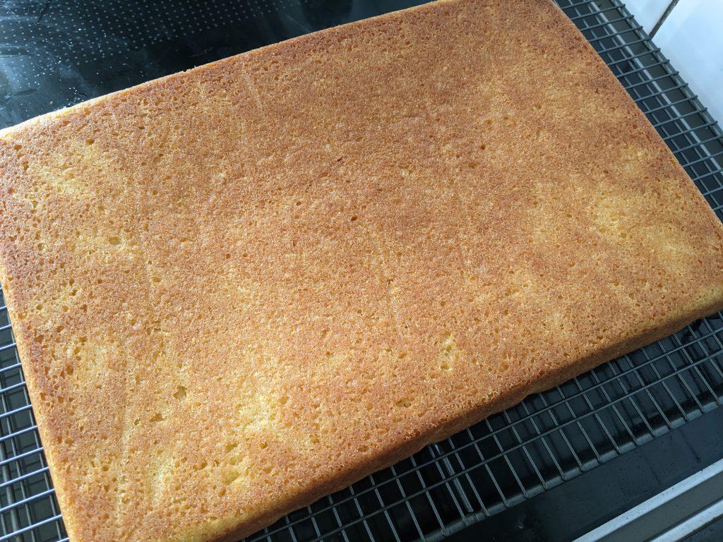 gluten free sheet cake sponge
